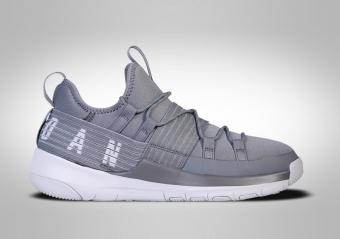 jordan trainer pro grey